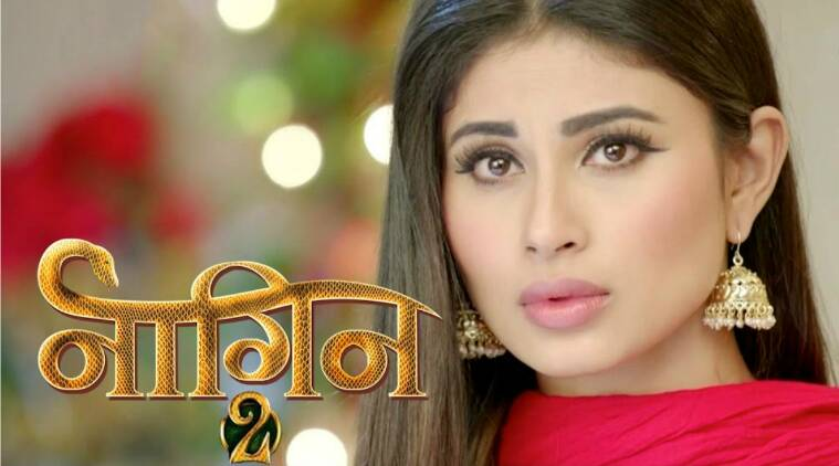 Naagin, Naagin 2, Naagin November 19, Naagin written update, Naagin episode, Naagin 19 Nov episode, Naagin show, Naagin Shivangi, Naagin news, television updates, Indian express, Indian express news