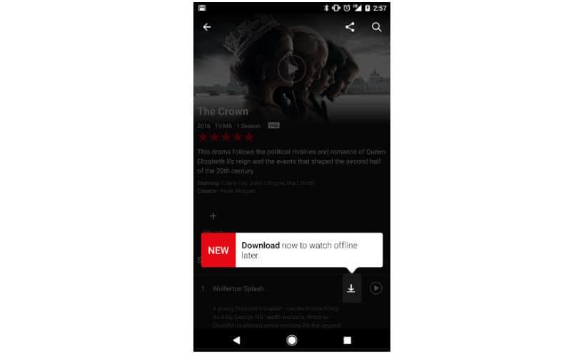 Netflix, Netflix app, Netflix offline, Netflix download option, Netflix Download option, Netflix Offline, Netflix plan India, Netflix Download option charge, Netflix how to download shows, Netflix Download list, Netflix shows for download, technology, technology news
