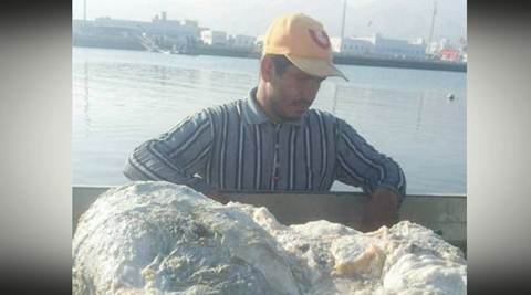 whale, whale vomit, whale secretion, ambergris, ambergris worth, ambergris perfume, whale vomit price, whale secretion worth, oman, omani fishermen ambergris haul, world news, odd news, latest news, viral news