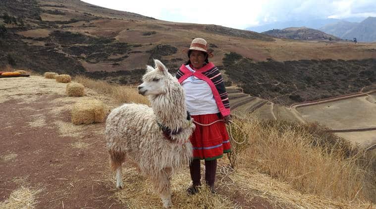 peru, peru tourism, peru attraction, Machu Picchu, Peru UNESCO sites, Incasvalley, Cusco, Urubamba, Incan citadel, south america tourism, lifestyle news, indian express