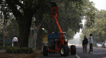Govt notice to CPWD for dumping debris ontrees