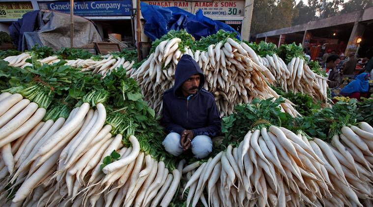 A vendor sits amidst heaps of radishes as he waits for customers at a wholesale vegetable market in Chandigarh, India, November 16, 2016. REUTERS/Ajay Verma TPX IMAGES OF THE DAY