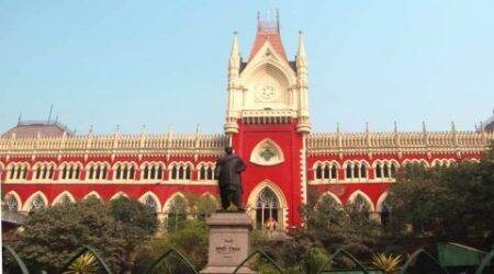 Kolkata: HC allows adoptive couple to keep child, directs mother to approach lowercourt