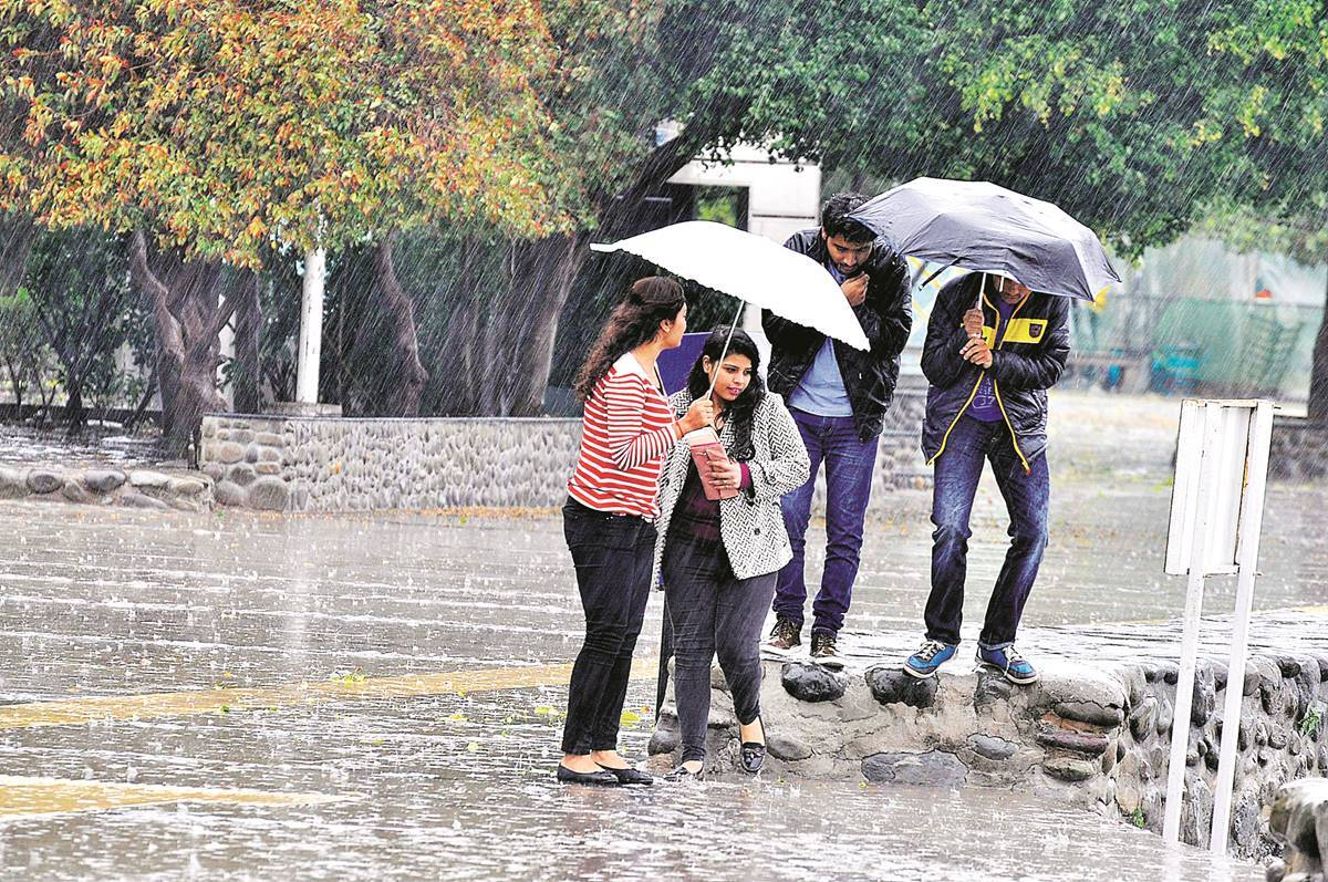 Christmas cheer in Chandigarh: Spell of rain brings temperature down by  around 7 degrees   Cities News,The Indian Express