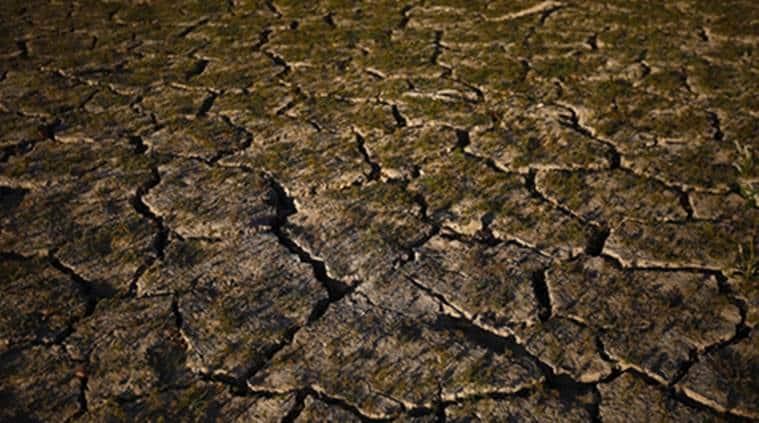 Tamil Nadu, Tamil Nadu drought, drought-hit declared in Tamil Nadu, Panneerselvam, Tamil Nadu- Panneerselvam, Tamil Nadu farmers-drought, Tamil Nadu news, India news, Indian Express