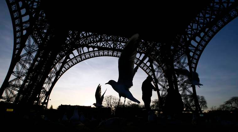 Pigeons and seagulls fly under the Eiffel Tower on the second day of the strike, in Paris, Wednesday, Dec. 14, 2016. The Eiffel Tower, which is normally open every single day of the year, closed Tuesday because of a strike over salaries and working conditions. (AP Photo/Francois Mori)