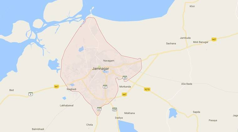 Bird flu scare: Two more birds found dead in Jamnagar village ... Dead Found On Google Maps on