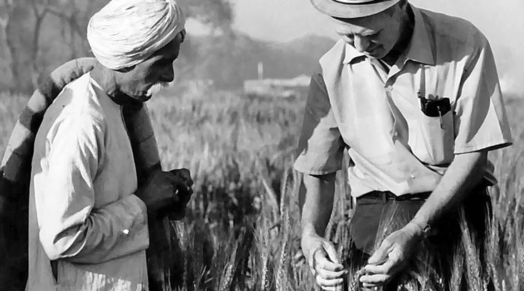 Chaudhary Bhoop Singh and Norman Borlaug checking the crop at a field