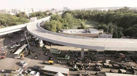 Gurgaon: Over 9,000 trees chopped for underpasses,flyover