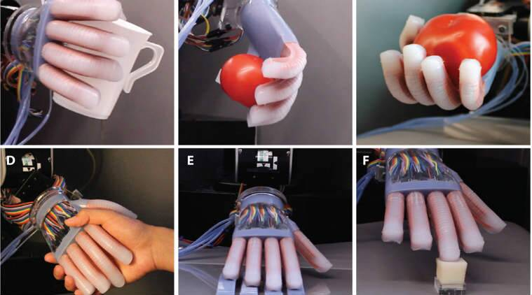 robotic hand, soft robotic hand, surrounding sensing robot, robot tactile sensing, sesnors in robot, optical waveguides robot, optoelectronic prosthesis, robot prostectic hand, science, science news