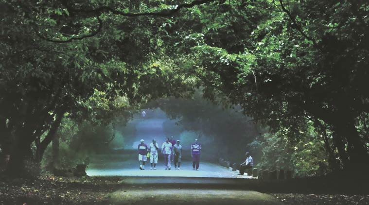 borivli national park, sanjay gandhi national park, sgnp, indian express