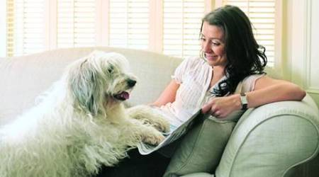 pet, pets, pet relations, relationship with pets, spending time with pets, lifestyle news, eye 2017, sunday eye, eye magazine
