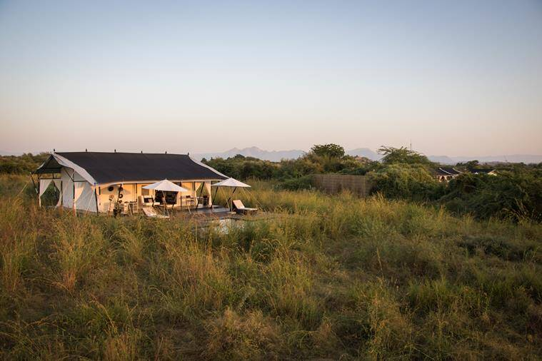 Royal tent at the Jawai camp.