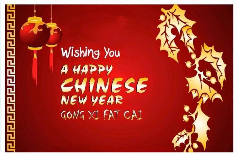source chinese new year