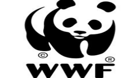 OECD to probe rights abuse allegations against WWF