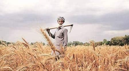 maharashtra assembly, maharashtra legislative assembly, crop loan, crop credit, maharashtra government, maharashtra farmers, loan waiver demand, mumbai news, indian express news