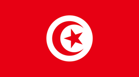 Why did the Arab Spring begin in Tunisia?