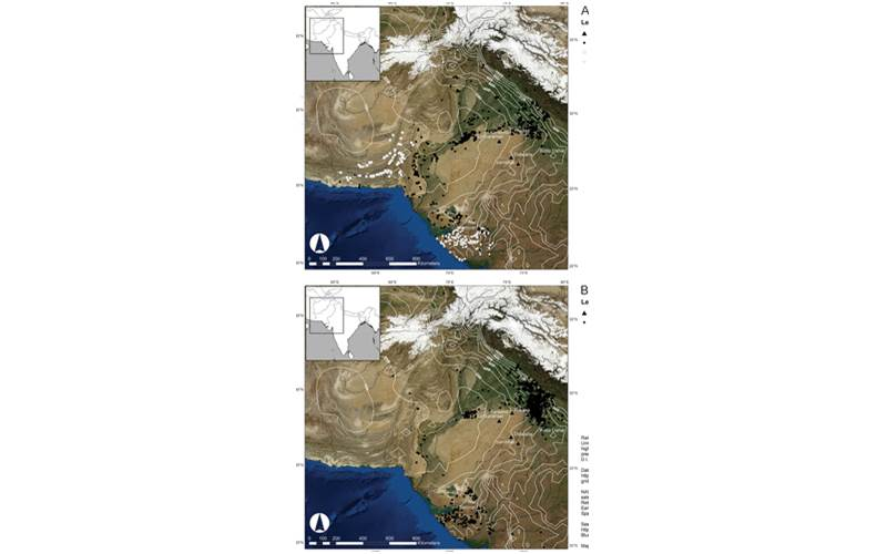 Indus Civilisation, climate change, ancient population India, civilisation, early societies, Kotla Dahar, science, science news
