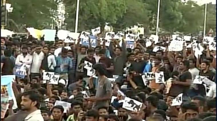 People in Chennai continue their protests in favour of bull-taming sport. (Source: ANI)