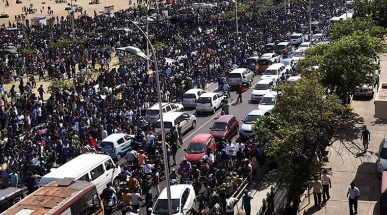 Tamil nadu, Jallikattu, Jallikattu protests, Tamil Nadu jallikattu, Jallikattu news