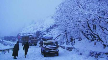 Kashmir: Heavy snowfall draws tourists, hoteliers upbeat