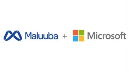 Microsoft, Maluuba, Microsoft acquires maluuba, artificial learning, deep learning, AI language understanding, machine learning, human language learning AI, technology, technology news