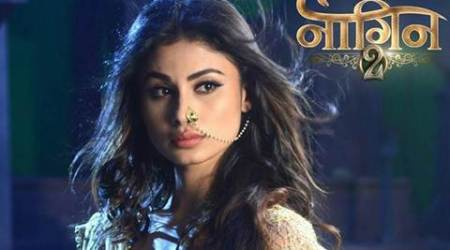 Naagin 2 31st December 2016 full episode written update, Naagin 2 31st December 2016 full episode, Naagin 2