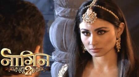 Naagin 2, June 25th full episode written update: Rocky and Shivangi are determined to kill Shesha and lead a new life