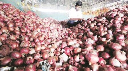 tomato price, tomato cost, onion price, indian express news