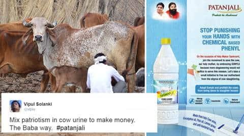 patanjali, ramdev, gonyle, patanjali cow urine phenyl, patanjali cow urine products, ramdev cow urine floor cleaner, india news, latest news, indian express