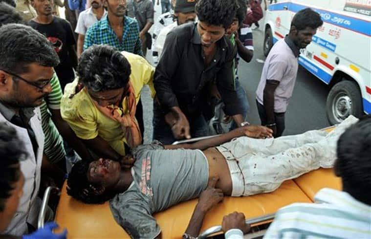 jallikattu, jallikattu protest, tamil nadu, chennai