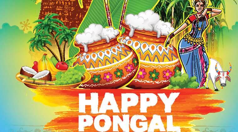 Pongal 2017 wishes best pongal sms whatsapp facebook messages pongal 2017 pongal 2017 date pongal festival india pongal in tamil nadu m4hsunfo