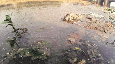 Dying Rivers of Pune Part I: Untreated sewage, garbage define Mula, Mutha