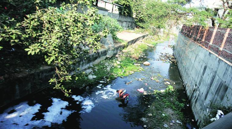 Pune rivers, Pune polluted rivers, polluted rivers, Pune local water bodies, Pune pollution, Pune water pollution, Pune river, Pune dumping ground, indian express news
