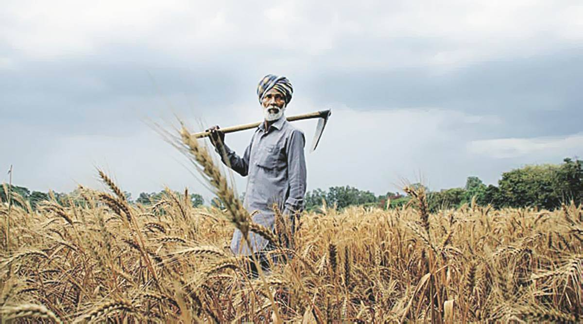 Growth likely to be higher than CSO estimate of 2.1 per cent: Agriculture Ministry