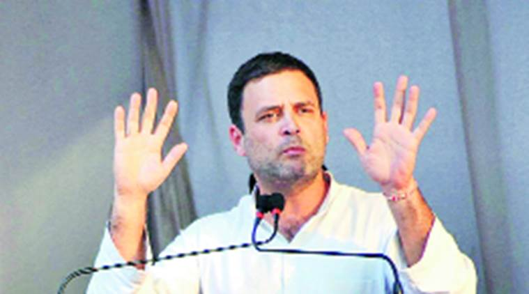 goa assembly elections, goa elections, rahul gandhi, rahul gandhi goa, rahul gandhi goa elections, goa news, india news, latest news, indian express