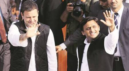 UP polls: Congress to contest from Rae Bareli's Sareni seat against SP
