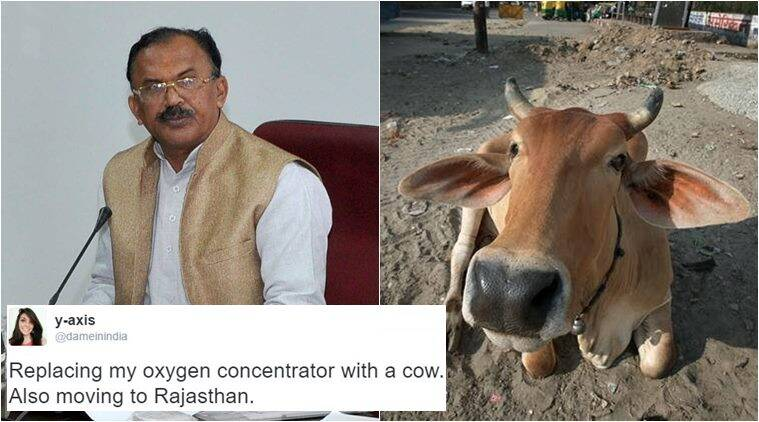 BJP minister cow oxygen comment, cows exhale oxygen, rajasthan education minister, rajasthan minister cow oxygen, rajasthan minister cow inhales exhales oxygen, vasudev devnani cow oxygen, vasudev devnani cow inhales exhales oxygen, indian express, indian express news, trending, trending in india, viral