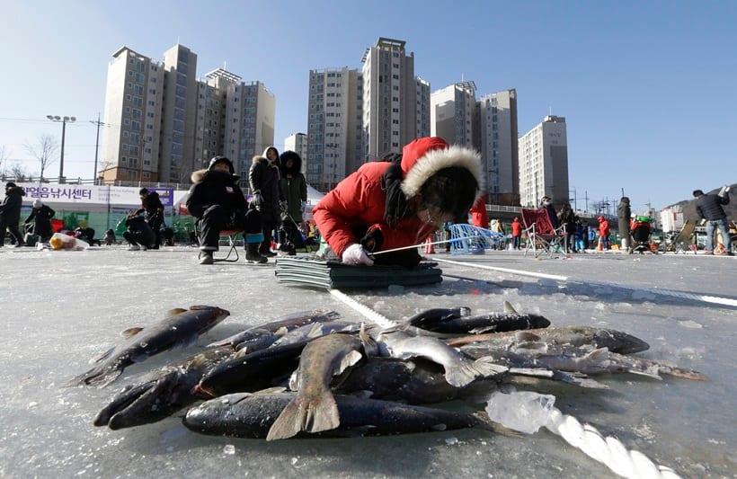 south korea, winter, winter festival, ice festival, ice fishing festival, unique winter festivals, South Korea Ice Fishing Festival, Hwacheon Sancheoneo Ice Festival, 2017 Hwacheon Sancheoneo Ice Festival, 2017 south korea fishing festival, lifestyle news, world news, latest news, indian express