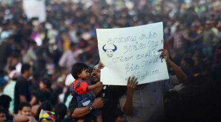 Jallikattu protests: Not new for Tamils to stand united for something they believein