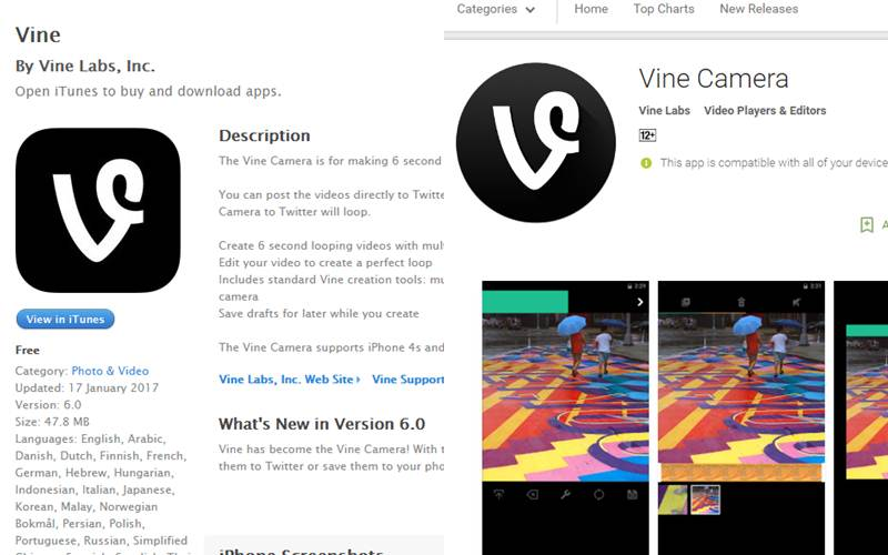 Vine Camera app is now ready for download on Android, iOS
