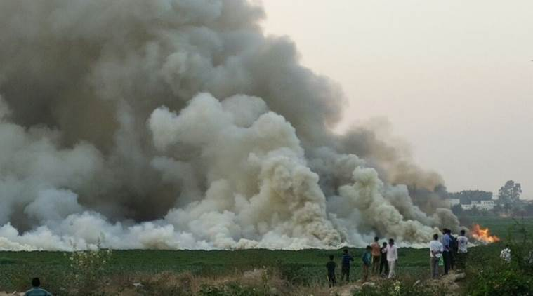 bellandur lake, bellandur, bengaluru lake, bangalore lake, bellandur lake fire, bellandur lake smoke, bengaluru fire, bengaluru lake fire