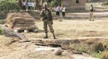 North Dinajpur: BSF finds 80-metre tunnel near border outpost