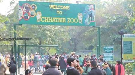Mahendra Chaudhary Zoological Park: Do birdwatching on five themes from April