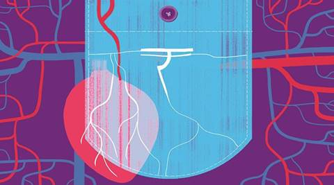 pricing, stent pricing, NPPA pricing,stent cap, stent supply, stent trade, heart medicine, National Pharmaceutical Pricing Authority, drug-eluting stent, indian express news, business new