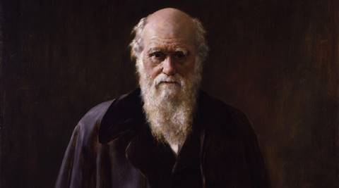 Darwin's theory of 'living fossils' getssupport