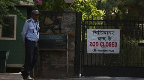 Delhi zoo's only four monitor lizards die of 'shock'