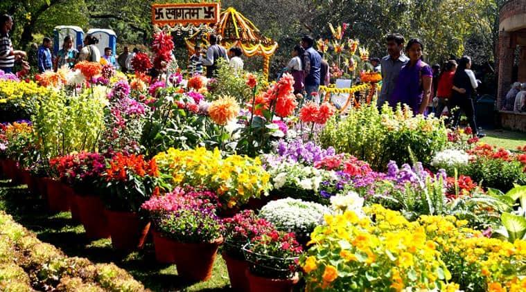 Garden Of Five Senses Saket Flower Show Garden Ftempo