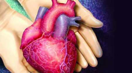 prevention of blood clots in heart, Mitral valve, jet penetration, EPI, supercomputer, patient specific models of organ, echo cardiogram data, John Hopkins University, high fidelity models, patient specific heart simulations, Science, Science news