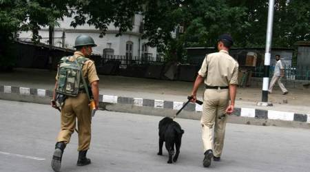 J&K: Cops look for JeM team planning to strike security installation